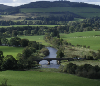 The River Tweed